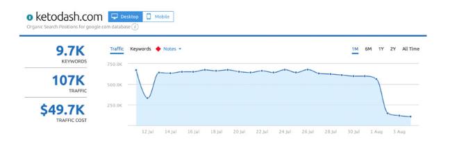 Google演算法更新對國外網站流量的影響