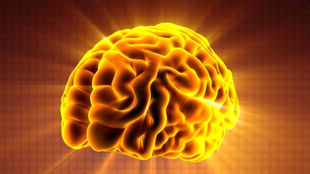 大腦演算法-Google演算法-看見流量成長-零一行銷_1
